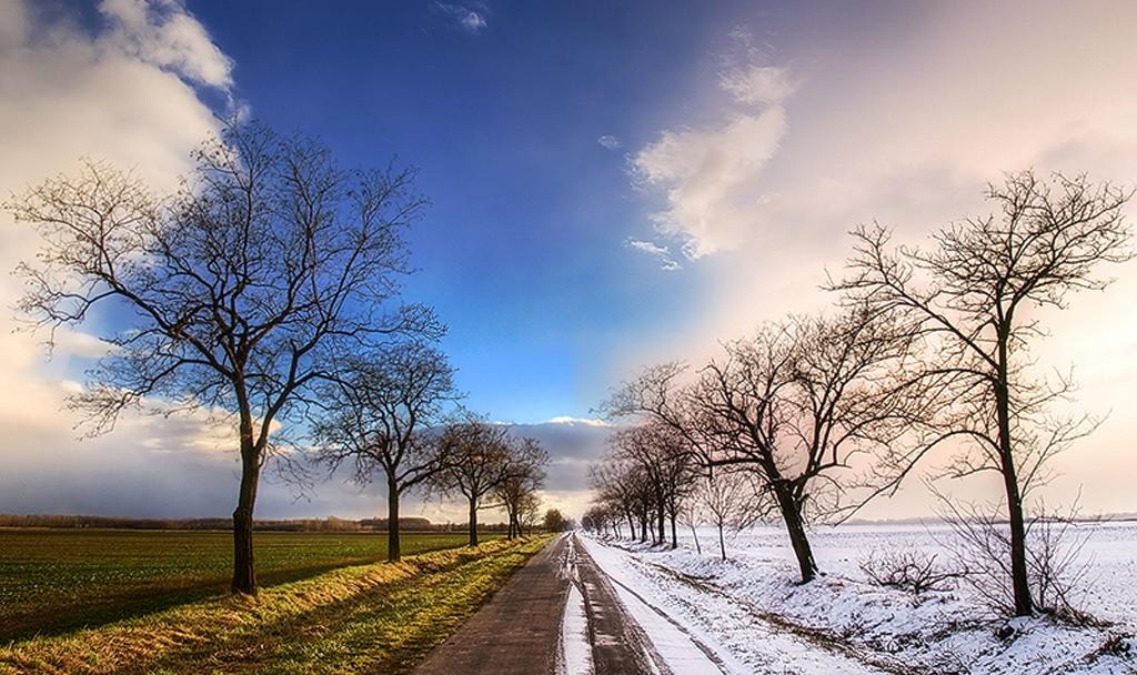 Зимовий подих весни