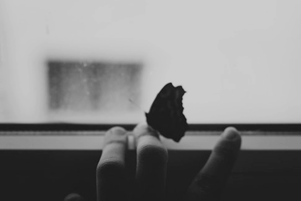 Вічно жива Чорно-біла фотографія